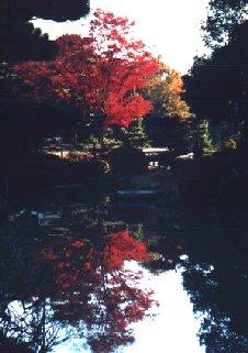 Kofun Pond Suinin 11; Actual size=240 pixels wide